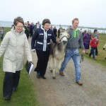 Walking with the donkey